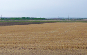 Ground Level Land Corp - Clairmont, AB